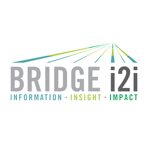 Bridgei2i